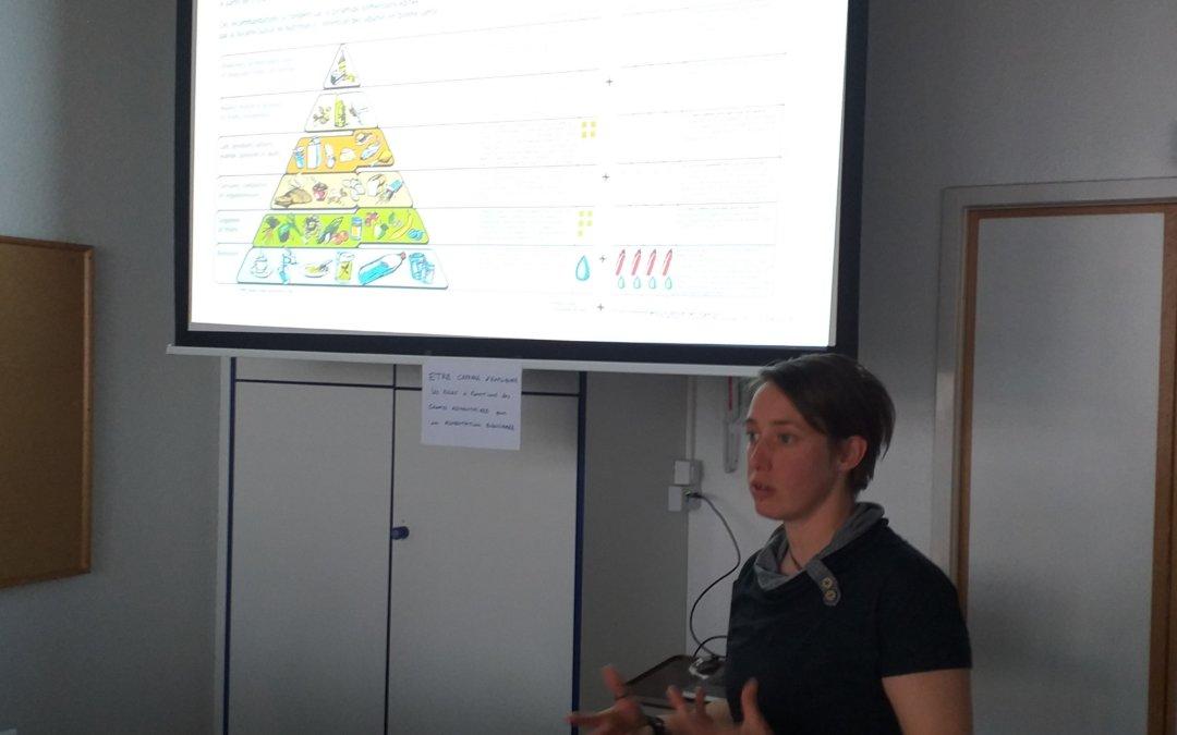 La nutrition et le tchoukball : 3 ateliers pour être plus performant